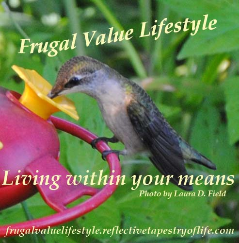 Frugal Value Lifestyle Hummingbird Nectar 4