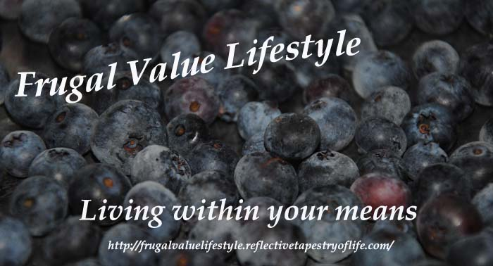 Frugal Value Lifestyle Freezing Berries 2