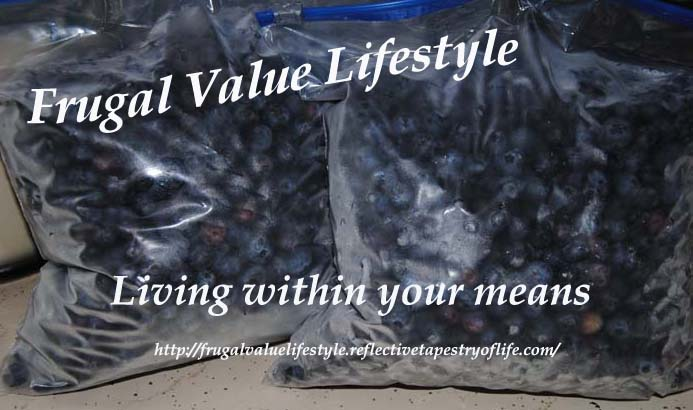 Frugal Value Lifestyle Freezing Berries 4