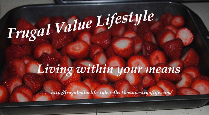 Frugal Value Living Before Freezing Berries 10