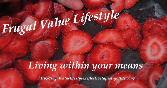 Frugal Value Living Freezing Berries 7