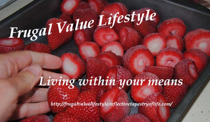 Frugal Value Living Freezing Berries 8
