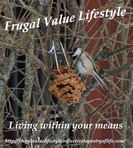 Feeding our Winter Feather Friends with Homemade Suet Laura of Frugal Value Lifestyle frugalvaluelifestyle.reflectivetapestryoflife.com