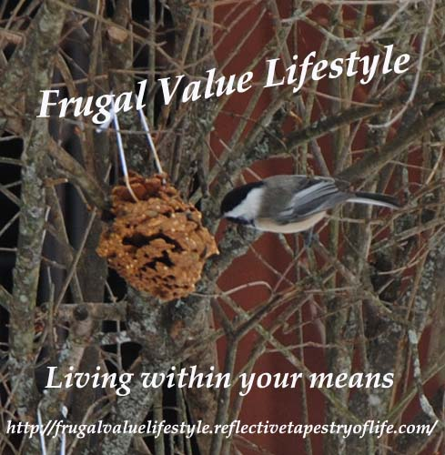 Feeding our Winter Feathered Friends Laura of Frugal Value Lifestyle www.frugalvaluelifestyle.reflectivetapestryoflife.com
